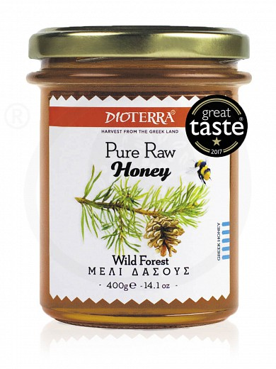 """Pure raw honey «Wild Forest», from Achaia """"Dioterra"""" 400g"""
